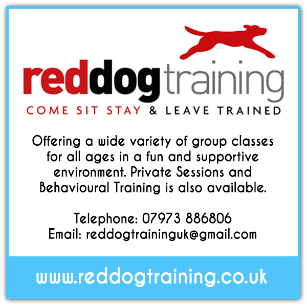 Red Dog Training